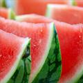 Лечебные и полезные свойства арбуза