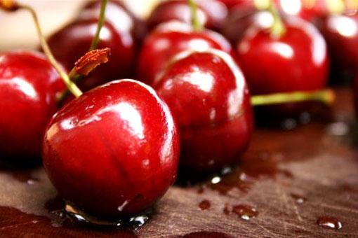 Полезные свойства бордовой ягоды черешни