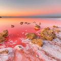 Кояшское красное озеро самое солёное в Крыму