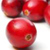 Красная ягода клюква — исконно русские шарики, заряженные жизненной энергией