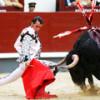 За что быки корриды не любят красную тряпку тореадора (мулету)