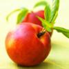 Профилактические и полезные свойства нектарина — плода вечной жизни