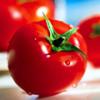 Диетические, питательные и полезные свойства помидора (томата) — красного яблока любви