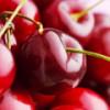 Полезные свойства бордовой ягоды черешни, известной за 8000 лет до нашей эры