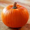 Лечебные и полезные свойства тыквы — главного атрибута Хэллоуина