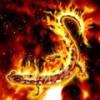 Огненная саламандра — представитель стихии огня способная к регенерации утерянных органов