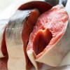 Полезные свойства красной рыбы кета, относящейся к семейству лососевых
