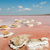 Два Красных солёных озера – достояние Крымского полуострова