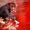 Красный дождь: внеземное происхождение или споры от водорослей