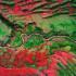 Знаменитая красная река в долинах Куско Перу