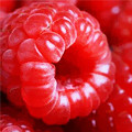Красная сладкая ягода малина - чудо лекарь и средство от сглаза