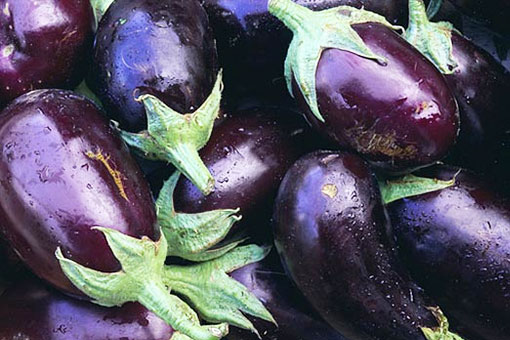 Полезные свойства красно-фиолетового баклажана