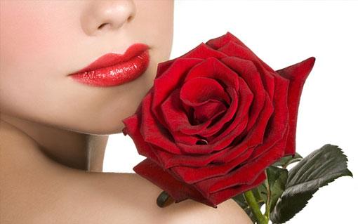 Роза в знак своей любви