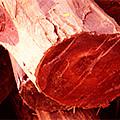 Дерево красный сандал