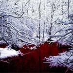 """Необычное красное """"Озеро крови"""" на севере Канады"""